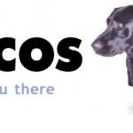 Lycos è pronto per ad affrontare il 2013